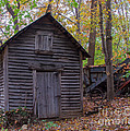 Ye Olde Shed by Scott Hervieux