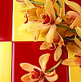 Yellow And Red Orchids  by Garry Gay