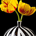 Yellow And Red Tulips by Garry Gay