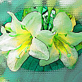 Yellow Aqua Weigela Art by Debbie Portwood