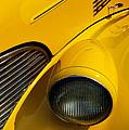 Yellow - D001178 by Daniel Dempster