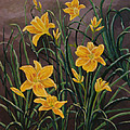 Yellow Daylilies by Phyllis  Smith