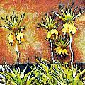 Yellow Flowers by Odon Czintos