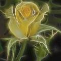 Yellow Fractalius Rose by Deborah Benoit