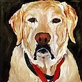 Yellow Labrador At Christmas by Betsy Doody