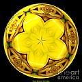 Yellow Lily Kaleidoscope Under Glass by Rose Santuci-Sofranko