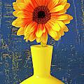 Yellow Mum In Yellow Vase by Garry Gay