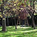 Yellow Swingset by Lorraine Devon Wilke