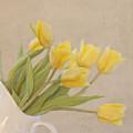 Yellow Tulips by Kim Hojnacki