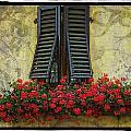 Yellow Wall by Mauro Celotti