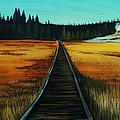 Yellowstone Boardwalk by Lucy Deane