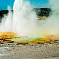 Yellowstone Geysers by Robert Bales