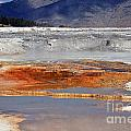 Yellowstone National Park Geothermal Reflections by Schwartz Nature Images