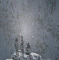 Yellowstone National Park, Winter View by Norbert Rosing