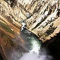 Yellowstone River Below Lower Falls by Paul Cannon