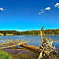 Yellowstone River by N D Finer