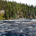 Yellowstone River by Robert Bales