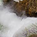 Yellowstone Waterfall by Colleen Johnson
