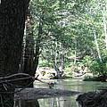 Yosemite Creek by Remegio Onia