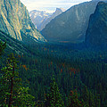Yosemite Park by C Sitton