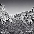 Yosemite Valley by John Waclo