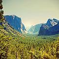 Yosemite Valley by Linda Olsen