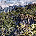 Yosemite Valley by Stephen Campbell