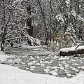 Yosemite Winter by Heidi Smith