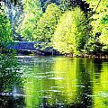 Yosemite's Merced River by Jeff Lowe