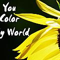 You Color My World by Judy Hall-Folde