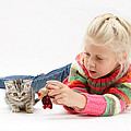 Young Girl With Silver Tabby Kitten by Mark Taylor