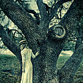 Young Lady In White By Tree by Jill Battaglia