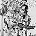 Young Men Working On Telephone Poles by Everett