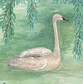 Young Swan Under Willow Tree by Sushila Burgess