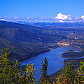 Yukon River In Fall Colors by Nick Norman