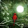 Yuletide Cardinal by Laura Iverson