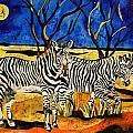 Zebras by Sandra Kern