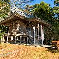 Zen Building In A Garden At A Sunny Morning by U Schade
