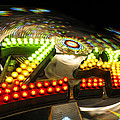 Zipper The Ride by David Lee Thompson