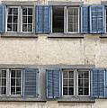 Zurich Window Shutters by Lauri Novak