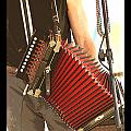 Zydeco Red Accordian by Margie Avellino