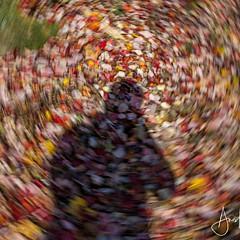 Anis Khan - Artist