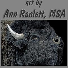 Ann Ranlett - Artist