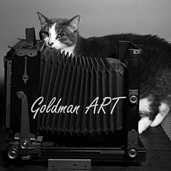 Bill Goldman - Artist