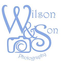 Gwen Wilson - Artist