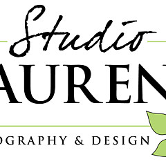 Studio Laurent - Artist