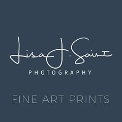 Lisa Saint - Artist