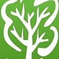 Hickory Tree Productions