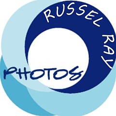 Photographic Art by Russel Ray Photos - Artist