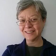 Susan Boyes - Artist